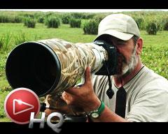 Tres amigos avistando una exclusiva variedad de aves en el Iberá