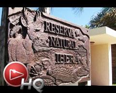 Características de la Reserva Natural del Iberá: Paraíso del ecoturismo